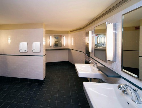 Professional sanitary facility